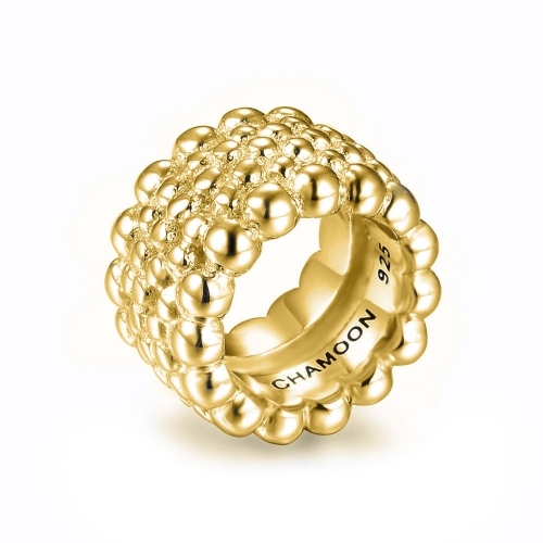 Circles of Life Charm gold-plated